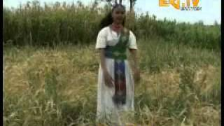 Eritrean Song By Feyore Keste - 24may91.net