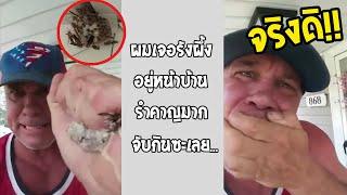 กินผึ้งทั้งรัง จิตใจทำด้วยอะไรครับ ทุกวันนี้ยังสบายดีไหมครับ?... #รวมคลิปฮาพากย์ไทย