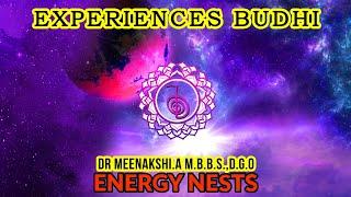 REIKI | 03 EXPERIENCES, BUDHI | ENERGYNESTS