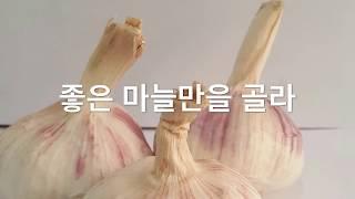 흑마늘 흑양파 우엉 차