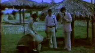 preview picture of video 'La Casa de Pequitas - Parque Zoológico Nacional - 1975'