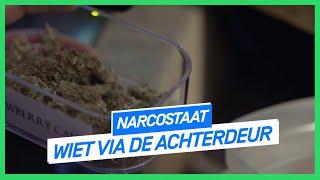 Wiet via de achterdeur | NARCOSTAAT | NPO 3 Extra