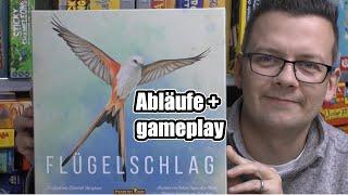 Flügelschlag (Feuerland) Teil 1 Abläufe + gameplay - Kennerspiel des Jahres 2019