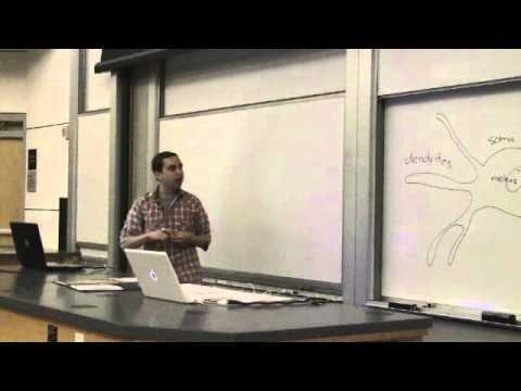 10. Introduction to Neuroscience I - YouTube