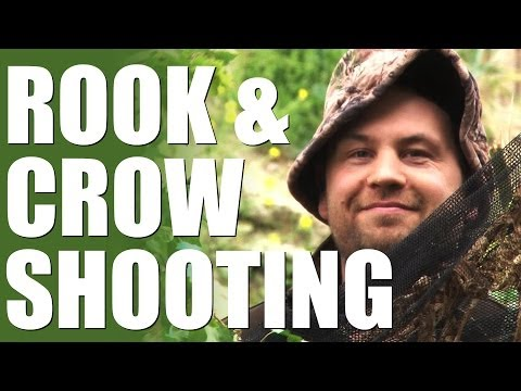 Rook and crow shooting with Mark Gilchrist