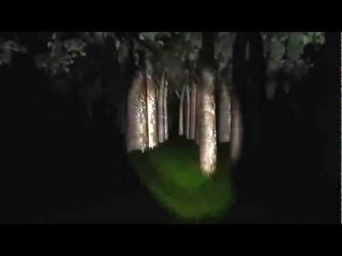 Trailer de Slender: Las 8 Páginas