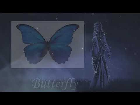 The Meaning of butterfly in Your Dream