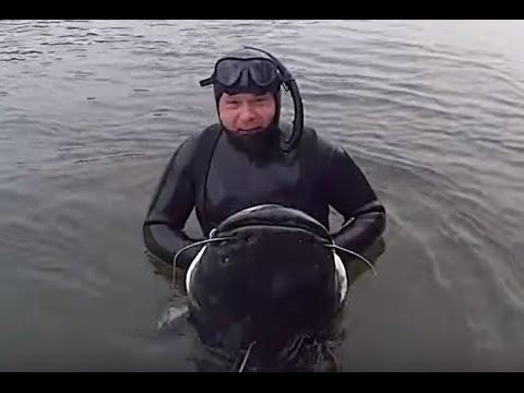Lago di una pesca di regione di Chelyabinsk sargaza