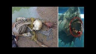 Bu Çocuk Göle Düştü, 2 Dakika Sonra Sadece Kemikleri Kaldı.