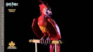 Harry Potter - Fønix'en Fawkes, Figur