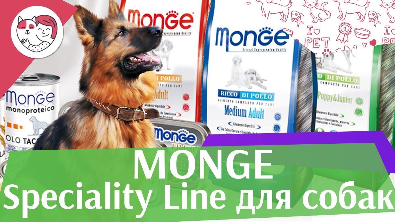 Monge сухой корм SPECIALITY для собак на  ilikepet