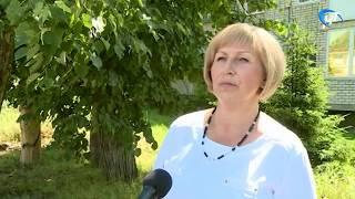 Глава Маревского муниципального района Олимпиада Ильина ушла в отставку со своей должности
