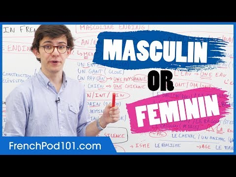 Download Gender of French Words: Masculin vs Feminin Mp4 HD Video and MP3