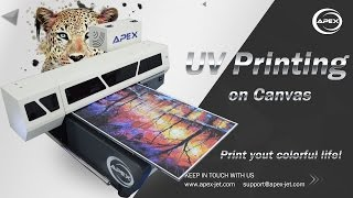 How to Print on Canvas with APEX UV Printer?