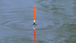 Пока рыба не клевала рыболов заметил что за время 20 с его поплавок