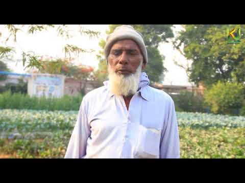 Interview: Farmer // Sehgal Foundation //Alfaz-E-Mewat // Krishi Jagran