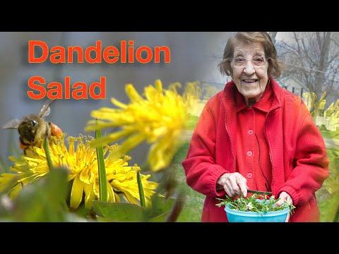 Great Depression Cooking – Dandelion Salad