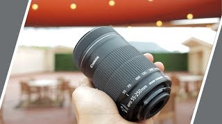 Why I Like the Canon 55-250m IS STM Lens For Photography