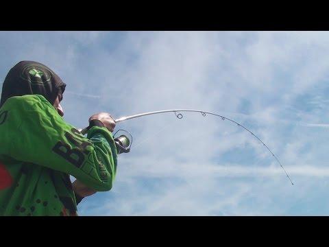 La relazione su fishings in Tomsk
