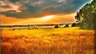 Juliane Werding - Um die ganze Welt