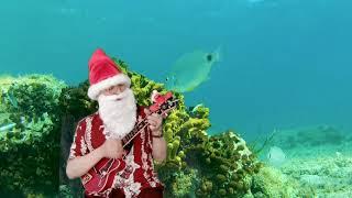 ディズニーの「Under The Sea」を唄ってみた