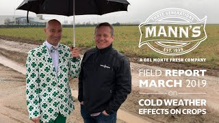 Field Report | March 2019 - Cold Weather Effects on Crops