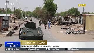 Nigerian Security Agencies Given Shoot To Kill Order Following Killings