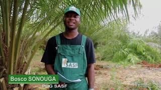 societe agricole sonouga et fils