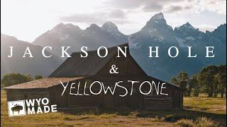 JACKSON HOLE & YELLOWSTONE TRAVEL VLOG