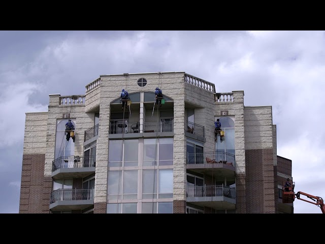 Commercial Window Cleaning Service Pressure Washing Roof Cleaning by Squeegee Squad