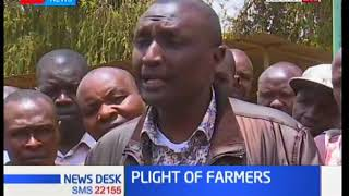 Moi Ben MP Silas Tiren gives his insight on the North Rift farmers plight