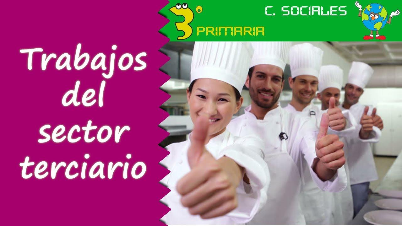 Ciencias Sociales. 3º Primaria. Tema 5. Trabajos del sector terciario