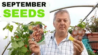 What seeds to SOW in September in the Allotment Vegetable Gardening UK