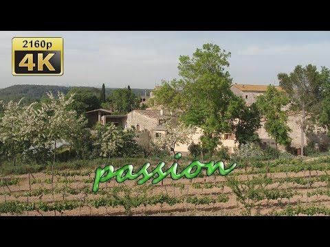 Vineyard Baronia de Vilademuls and Restaurant Can Xabanet, Banyoles - Spain 4K Travel Channel