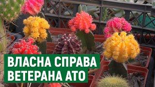 Житель Николаева вырастил дома около двух тысяч кактусов. ВИДЕО