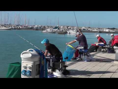 Sembrare da pesca un galleggiante