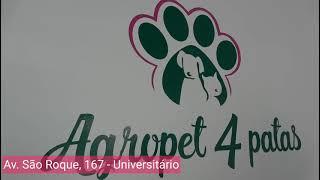 Inauguração AgroPet 4 Patas em Bento