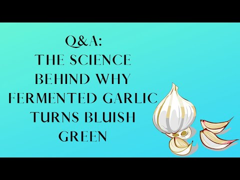 , title : 'Q&A The Science Behind Why Garlic Turns Bluish Green When Fermented