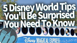 5 Disney World Tips Youll Be SURPRISED You Need To Know!