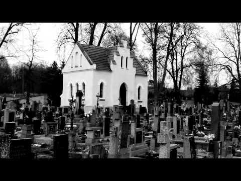 Milan Princ - Olda Krejčoves - Smrti má (z alba Smrti má Milana Prince)