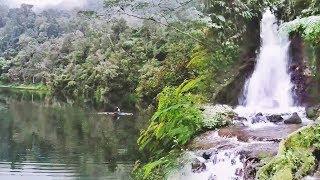 Danau Rana Mese Berselimut Kabut, Rumah Aneka Burung