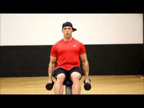 Seated DumbBell Front Raises