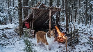 2 Night Winter Bushcraft Camp With My Dog
