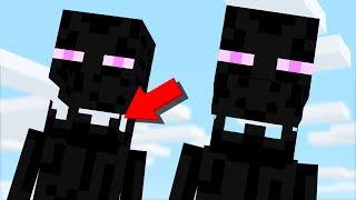 15 ODDEST Glitches STILL in Minecraft 1.14