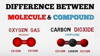 DIFFERENCE BETWEEN A MOLECULE & A COMPOUND - [ AboodyTV ] - Chemistry