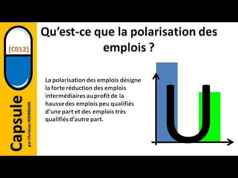 Qu'est-ce que la polarisation des emplois ?