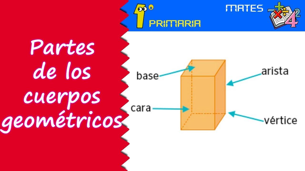 Matemáticas. 1º Primaria. Tema 8: Partes de los cuerpos geométricos