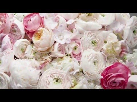 Tualetes ūdens Elie Saab Le Parfum Rose Couture edt 90 ml cena un informācija   Sieviešu smaržas   220.lv
