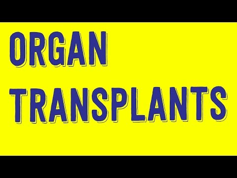 Should Smokers Get Lung Transplants? - Philosophy Tube