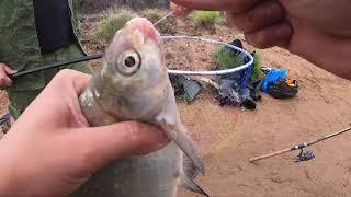 Рыбалка в самаре на реке самара